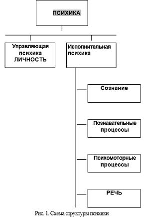 Схема элементарного потребностного цикла фото 863